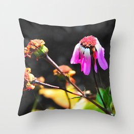 Hanging on to beauty Throw Pillow