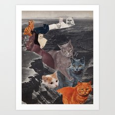 Ol' Cat Canyon Art Print