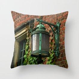 Light and Ivy Throw Pillow