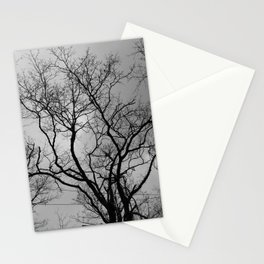 Black and white haunting forest Stationery Cards