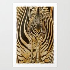 Zebra on Zebra Art Print