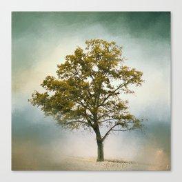 Bleached Sage Green Cotton Field Tree - Landscape  Canvas Print