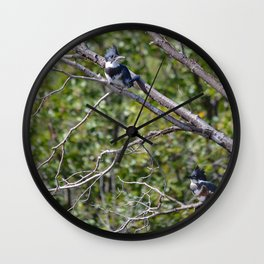 Two 4 One - Belted Kingfisher Wall Clock