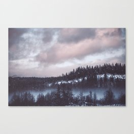 Winter II Canvas Print