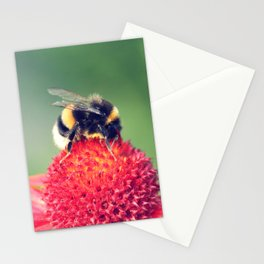 Bumble Bee on a Red Blossom Stationery Cards