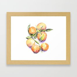 Sweet Clementines Framed Art Print