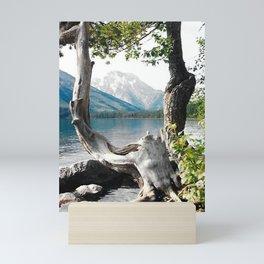 Tetons at Jackson Lake Wyoming Mini Art Print