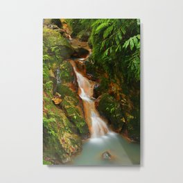 Stream in the forest Metal Print