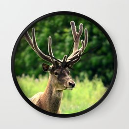 STAG 3/3 Wall Clock