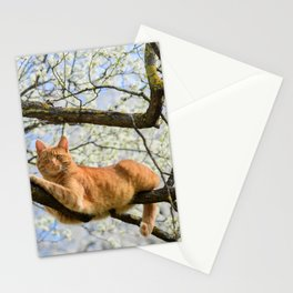 Beautiful ginger cat on plum tree. Stationery Cards