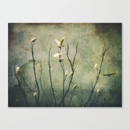 Golden Wing Canvas Print