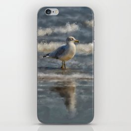 Seagull By The Seashore iPhone Skin