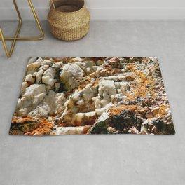 Watercolor Rock, Pegmatite 02, RMNP, Colorado, Lichen Encrusted Rug