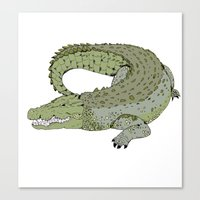 crocodile Canvas Prints featuring Crocodile by Melrose Illustrations