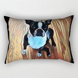 Begging Boston Rectangular Pillow