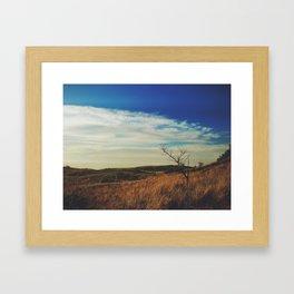 New Buffalo Tree Framed Art Print