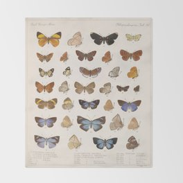Vintage Scientific Insect Butterfly Moth Biological Hand Drawn Species Art Illustration Throw Blanket