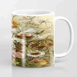 Ernst Haeckel Kunstformen der Nature Orchids Coffee Mug