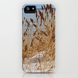 Silent Prisoner iPhone Case