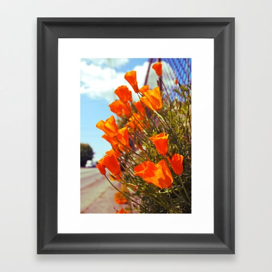 Roadside poppies Framed Art Print