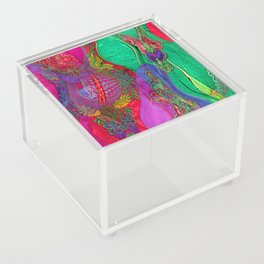 EMBROIDERED ASIAN FABRIC FANTASY COLLAGE Acrylic Box