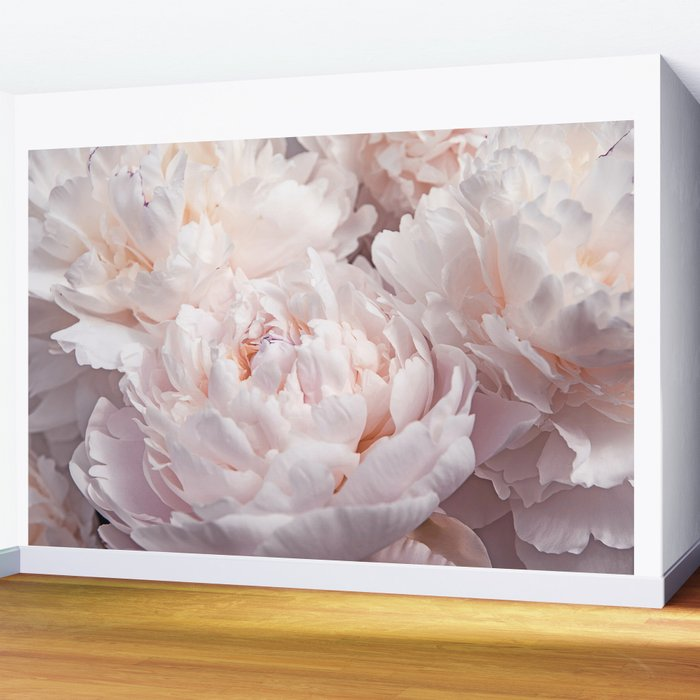 Floral Photography | Peony Pink Cluster | Flowers | Botanical | Plant Wall Mural
