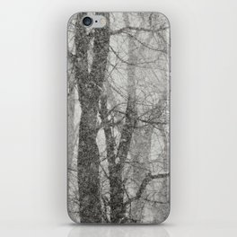 Shades of grey iPhone Skin