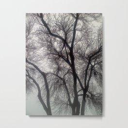 blacktree Metal Print