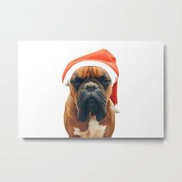 Christmas Boxer Metal Print