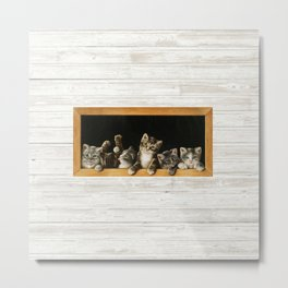 cats in frame on shiplap Metal Print