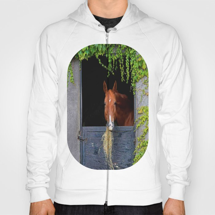 Home is where the Horse is Hoody