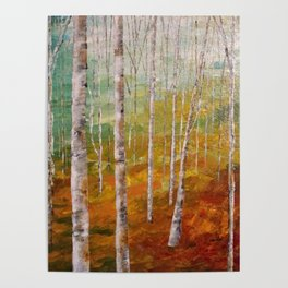 Birch Tree Forest Poster