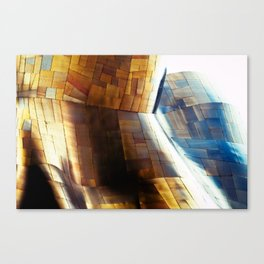 Experience the Music Project Canvas Print