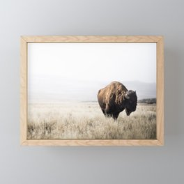 Bison stance Framed Mini Art Print