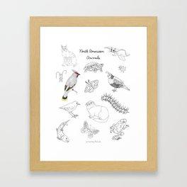 Animals of North America  Framed Art Print