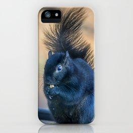 Black Squirrel iPhone Case