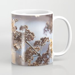 Sunlight through Dried Flowers Coffee Mug