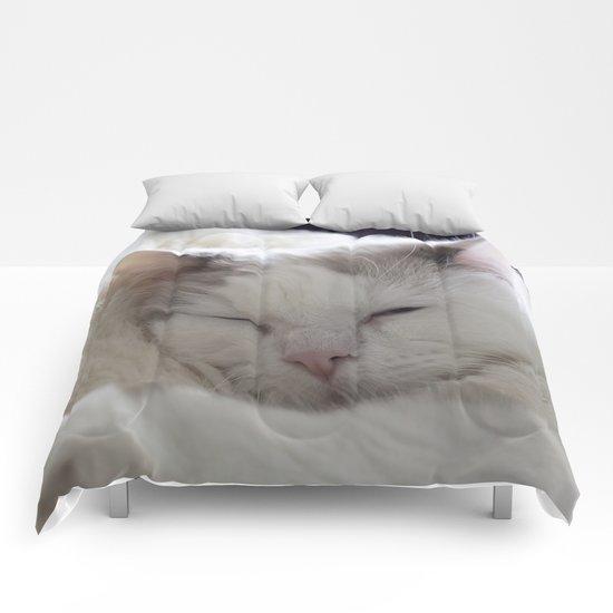 Ragdoll Cat Cuddles Comforters