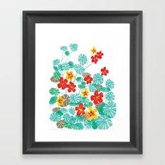 Nasturtiums Framed Art Print