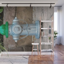 Super Centurion in Sliver and Green Fire Hydrant Fire Plub Wall Mural