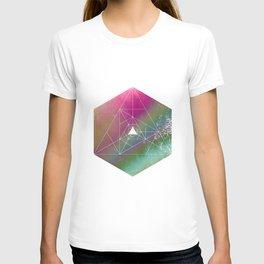 Color Burst - Flower Field T-shirt