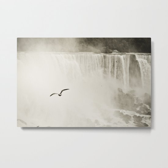 Flying over the Falls Metal Print