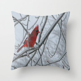 Redbird on Icy Tree Branch Throw Pillow