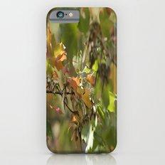 Autumn Arrival iPhone 6s Slim Case