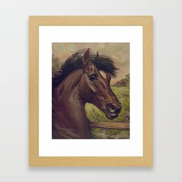 Vintage Horse Illustration (1893) Framed Art Print