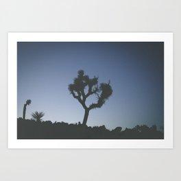 Silhouette // Joshua Art Print