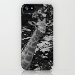 What's on iPhone Case