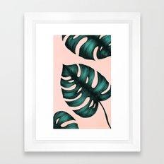 Philodendron Monstera Framed Art Print