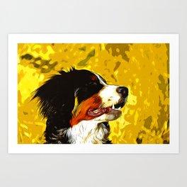 bernese mountain dog vector art Art Print