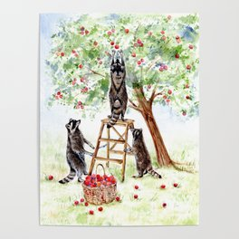 Cute Raccoons in the Orchard Poster